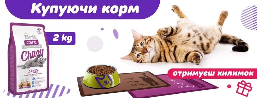 Коврики под миску для домашних животных, Корм для кошек и котов